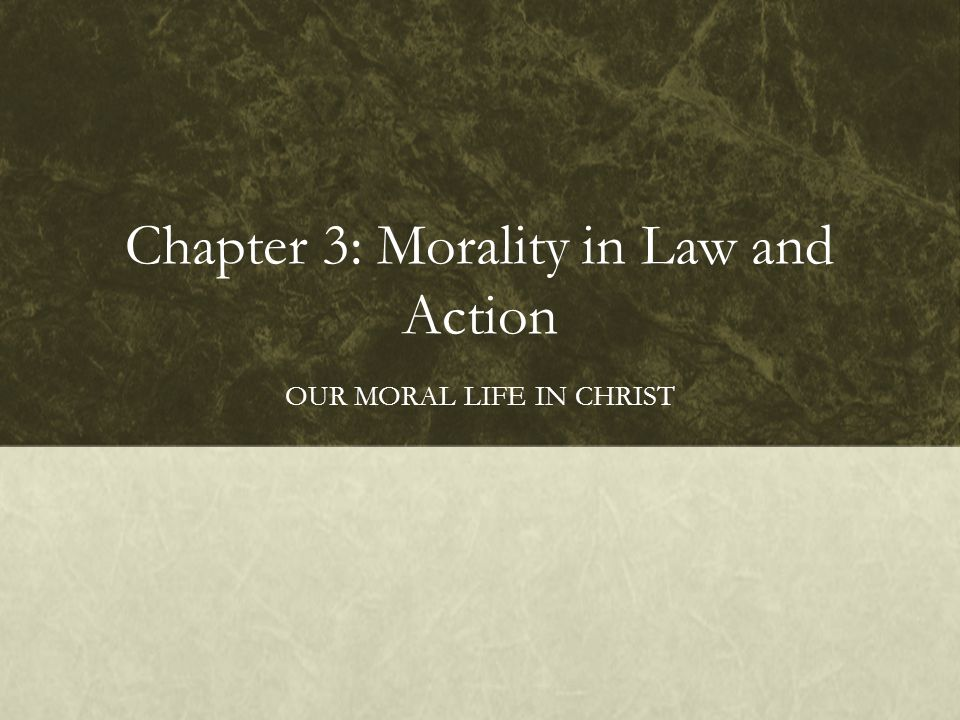 Chapter 3: Morality in Law and Action OUR MORAL LIFE IN CHRIST