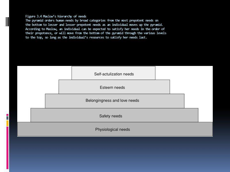 Figure 3.4 Maslows hierarchy of needs The pyramid orders human needs by broad categories from the most prepotent needs on the bottom to lesser and les