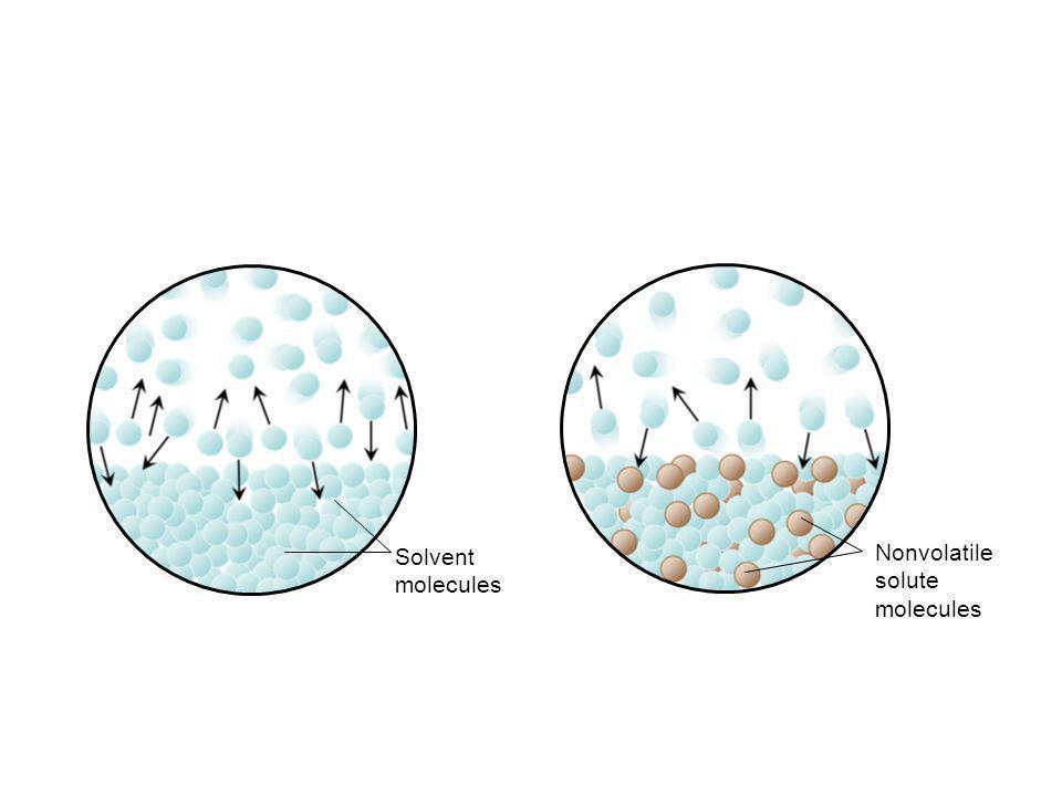 Solvent molecules Nonvolatile solute molecules