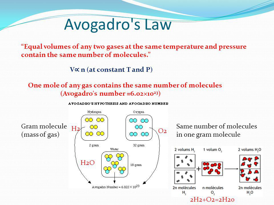 Avogadro s Law Equal volumes of any two gases at the same temperature and pressure contain the same number of molecules.