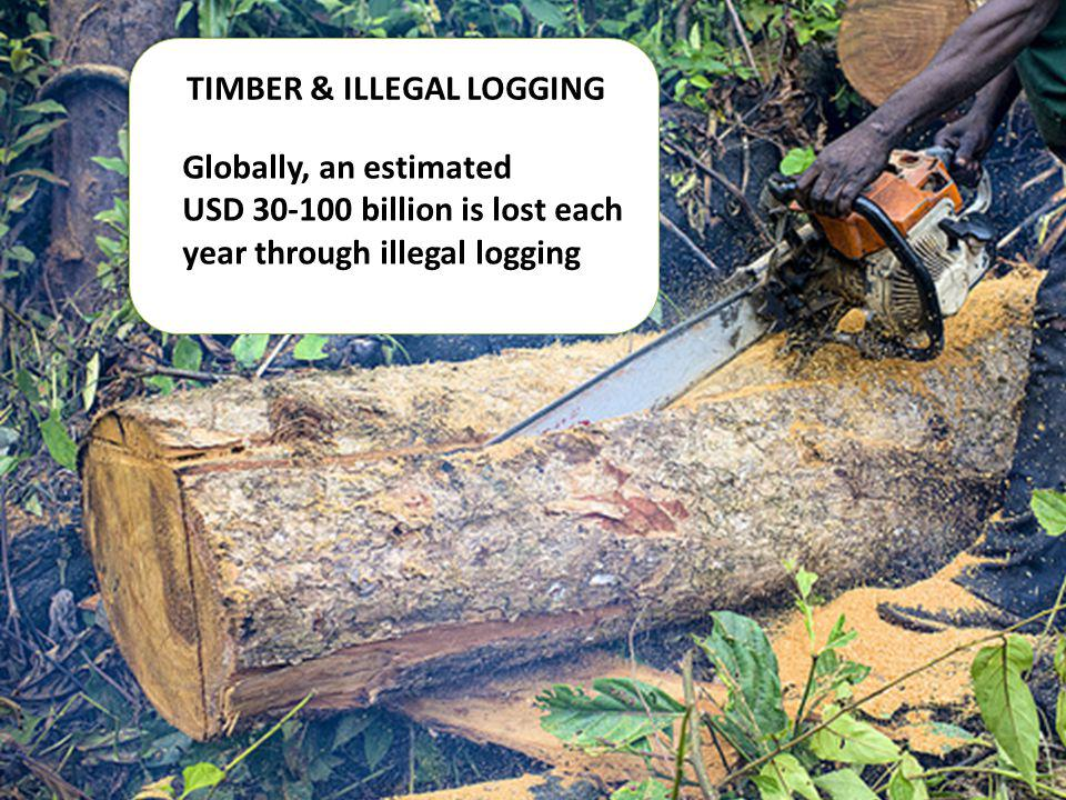 TIMBER & ILLEGAL LOGGING Globally, an estimated USD 30-100 billion is lost each year through illegal logging