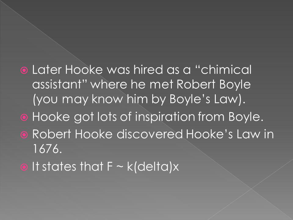 Later Hooke was hired as a chimical assistant where he met Robert Boyle (you may know him by Boyles Law).