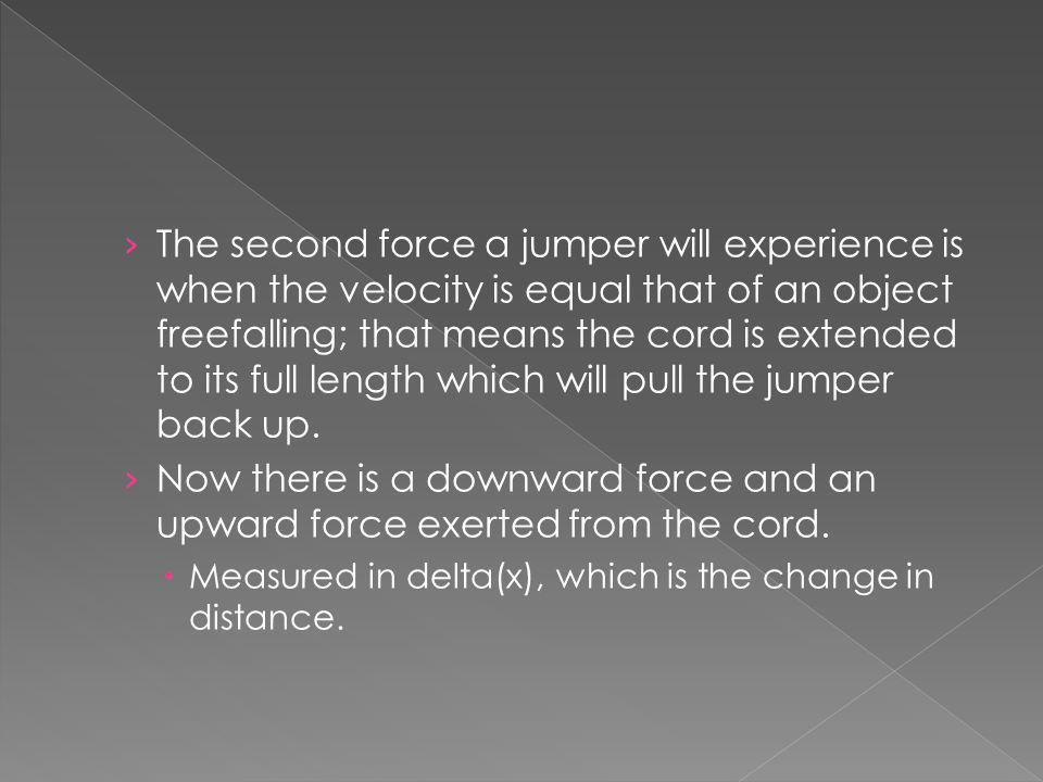 The second force a jumper will experience is when the velocity is equal that of an object freefalling; that means the cord is extended to its full length which will pull the jumper back up.