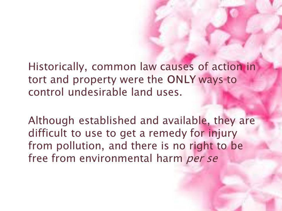 Historically, common law causes of action in tort and property were the ONLY ways to control undesirable land uses. Although established and available