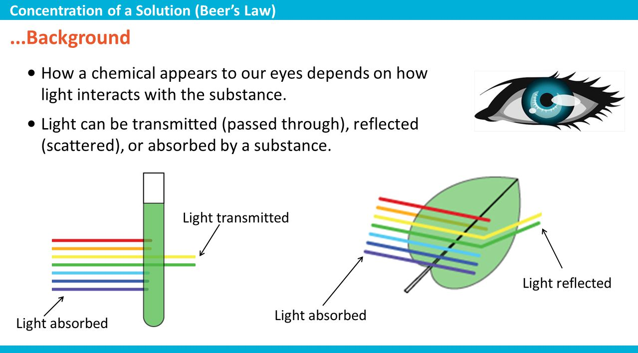 Multiple Choice 1.Which of the following variables affects the absorbance of light in a solution.
