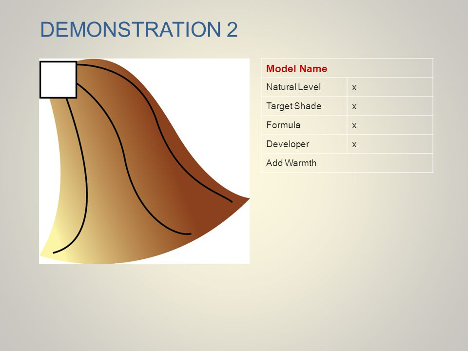 DEMONSTRATION 2 Model Name Natural Levelx Target Shadex Formulax Developerx Add Warmth