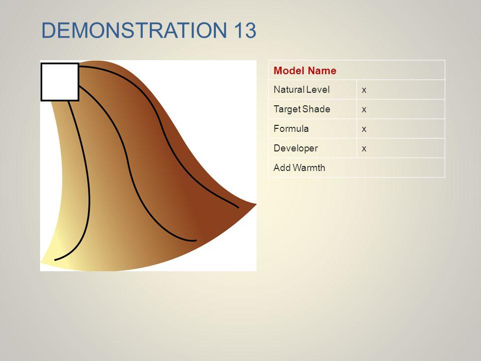 DEMONSTRATION 13 Model Name Natural Levelx Target Shadex Formulax Developerx Add Warmth