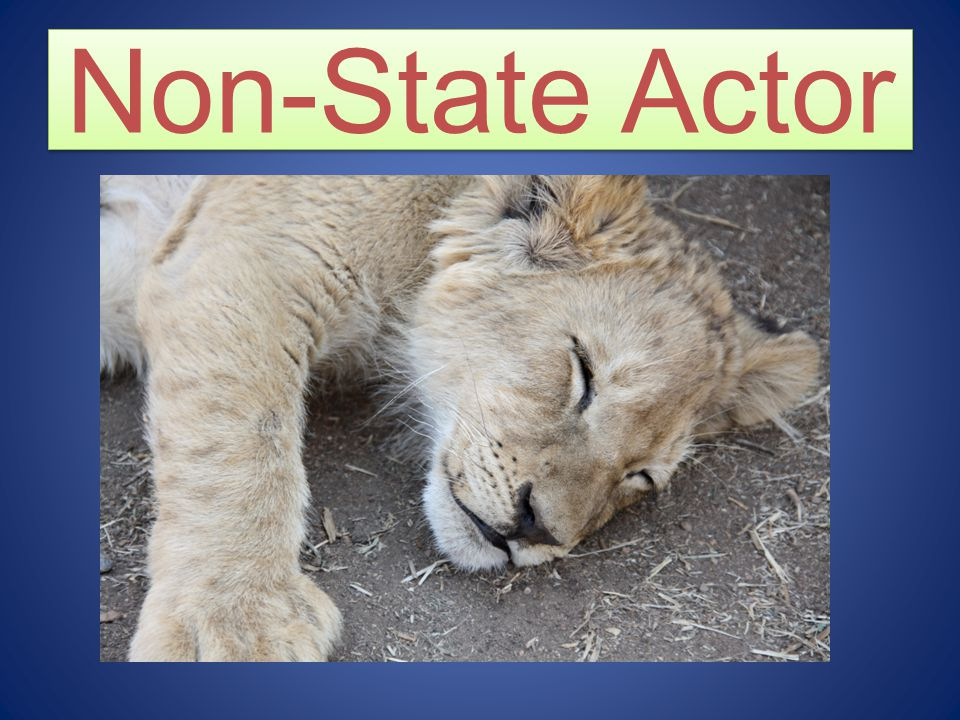 Non-State Actor