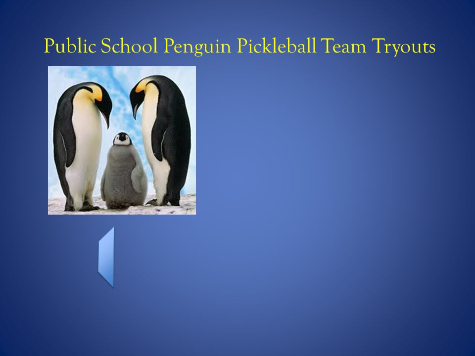 Public School Penguin Pickleball Team Tryouts