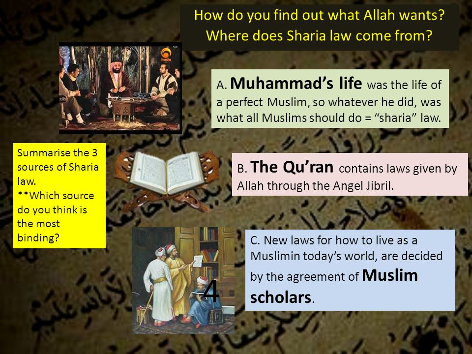 How do you find out what Allah wants. Where does Sharia law come from.
