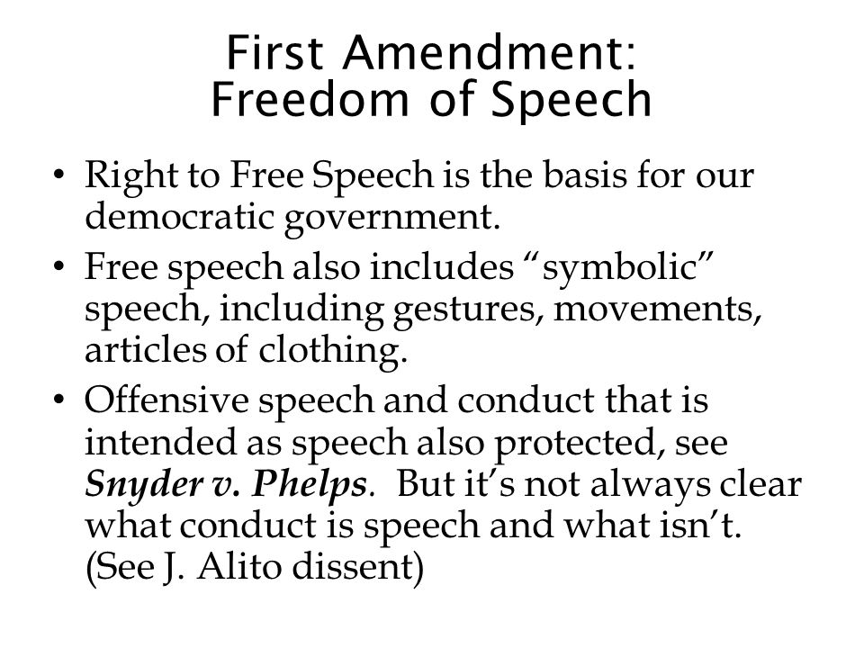 First Amendment: Freedom of Speech Right to Free Speech is the basis for our democratic government.