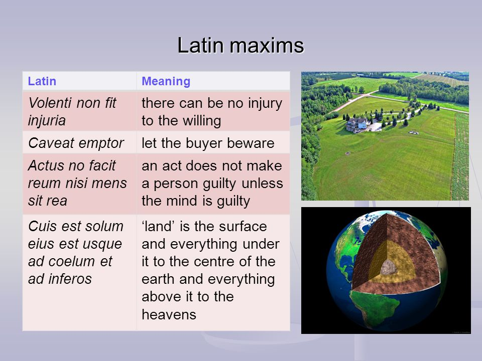 Latin maxims LatinMeaning Volenti non fit injuria there can be no injury to the willing Caveat emptorlet the buyer beware Actus no facit reum nisi mens sit rea an act does not make a person guilty unless the mind is guilty Cuis est solum eius est usque ad coelum et ad inferos land is the surface and everything under it to the centre of the earth and everything above it to the heavens