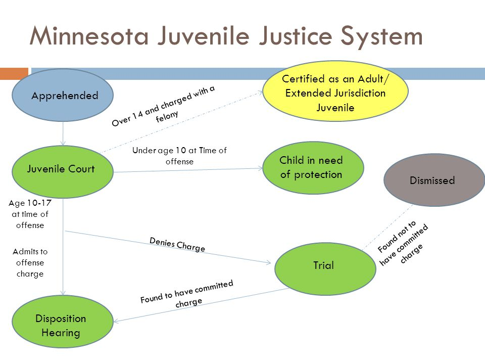 Minnesota Juvenile Justice System Apprehended Juvenile Court Disposition Hearing Trial Certified as an Adult/ Extended Jurisdiction Juvenile Child in