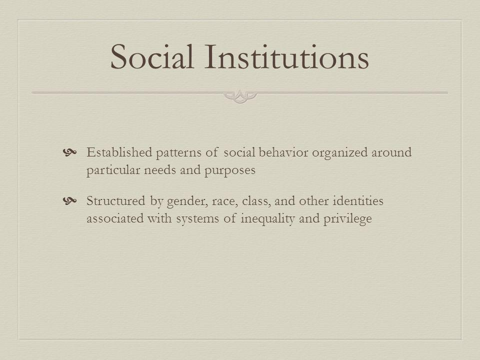Social Institutions Established patterns of social behavior organized around particular needs and purposes Structured by gender, race, class, and othe