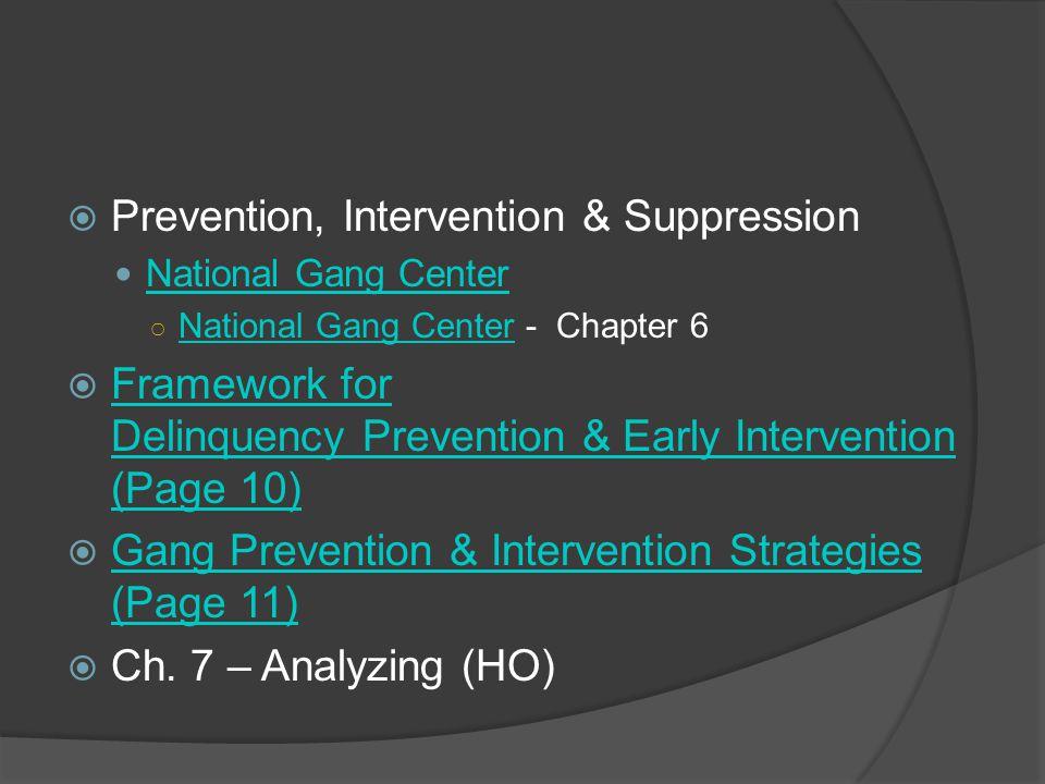 Prevention, Intervention & Suppression National Gang Center National Gang Center - Chapter 6 National Gang Center Framework for Delinquency Prevention