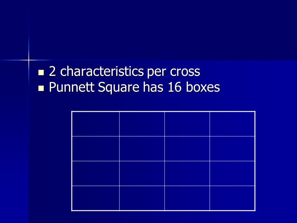 2 characteristics per cross 2 characteristics per cross Punnett Square has 16 boxes Punnett Square has 16 boxes