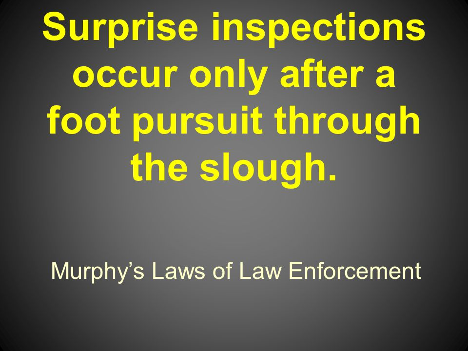 Murphys Laws of Law Enforcement Surprise inspections occur only after a foot pursuit through the slough.