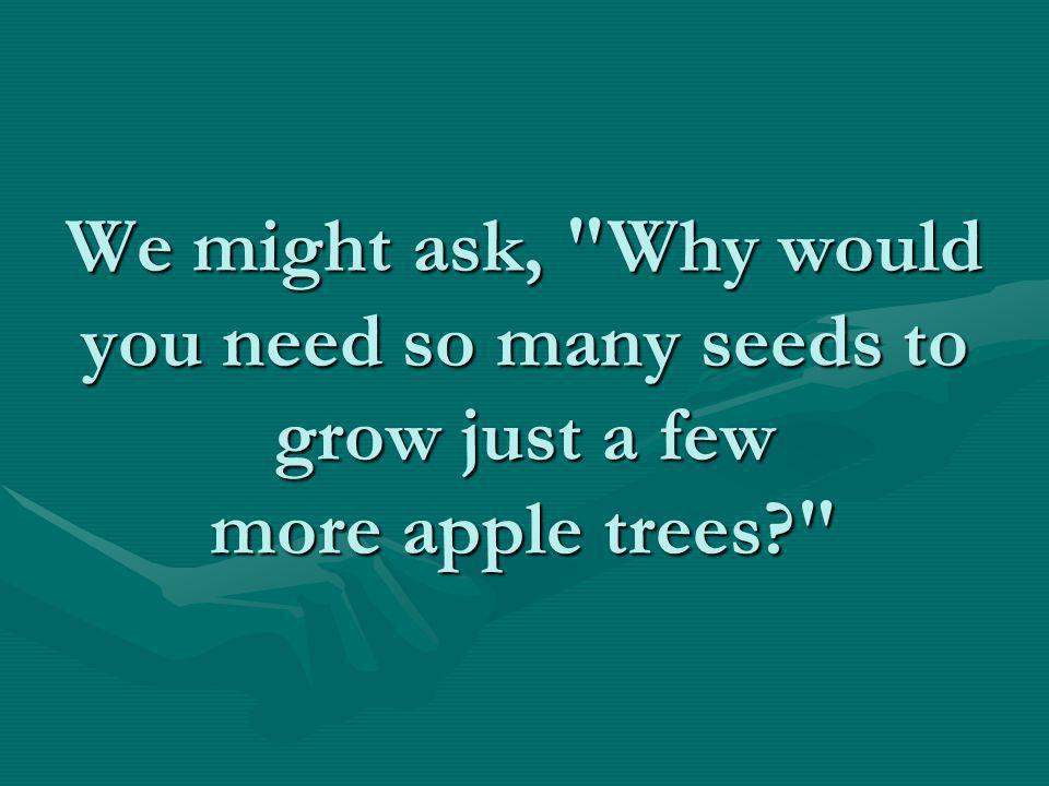 The Law of the Seed Take a look at an apple tree.