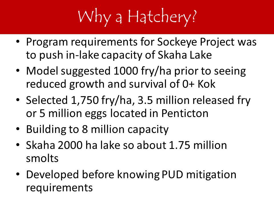 Why Hatchery.