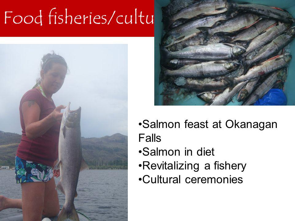 Food fisheries/culture Salmon feast at Okanagan Falls Salmon in diet Revitalizing a fishery Cultural ceremonies