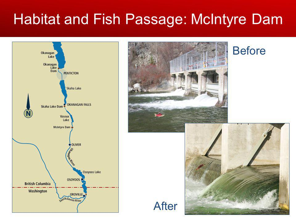 Habitat and Fish Passage: McIntyre Dam Before After