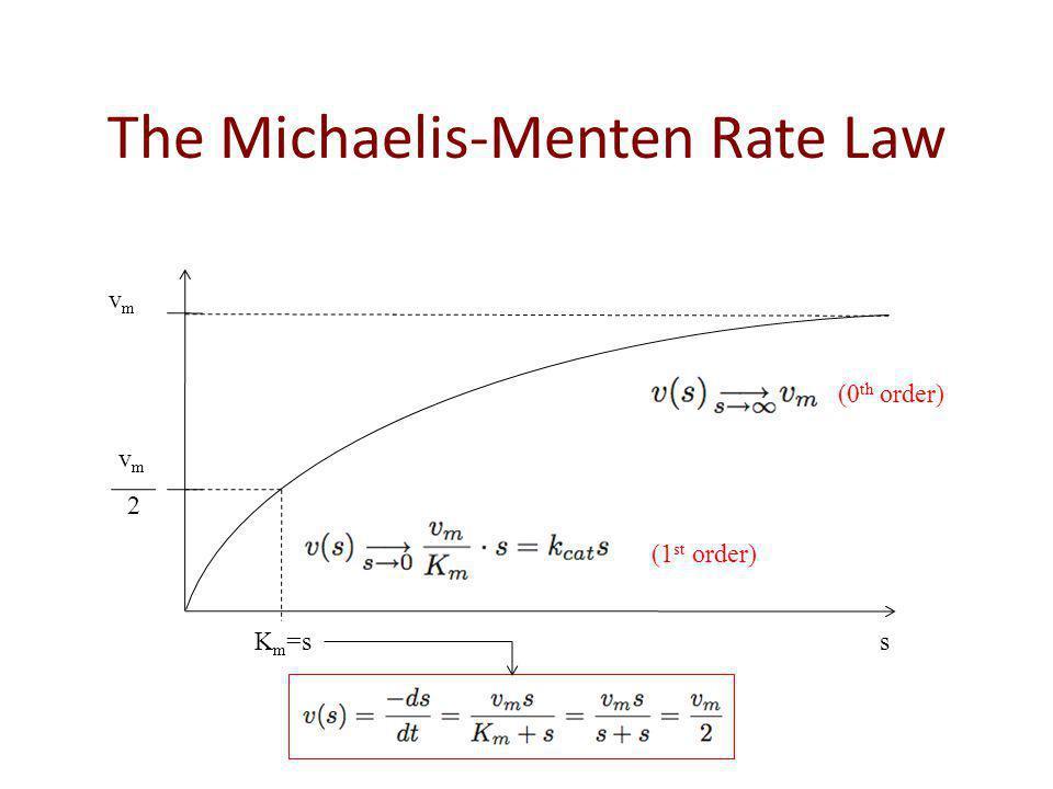 The Michaelis-Menten Rate Law vmvm vmvm 2 K m =s s (0 th order) (1 st order)