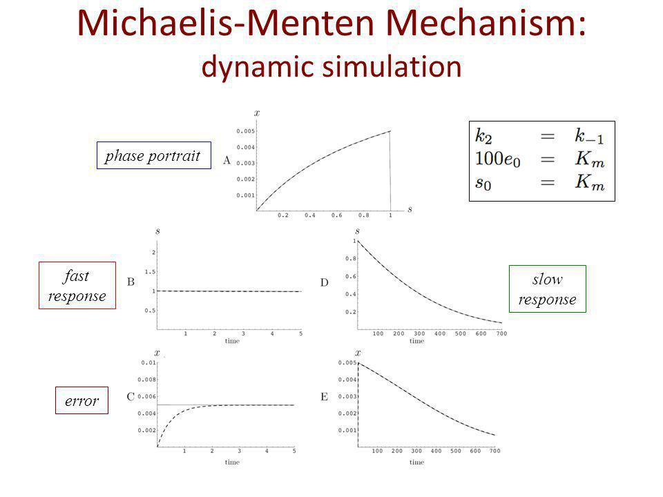 phase portrait fast response slow response error Michaelis-Menten Mechanism: dynamic simulation