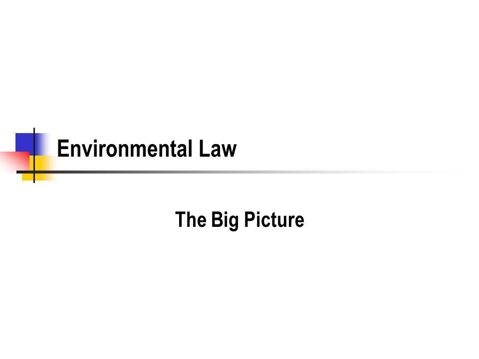 Environmental Law The Big Picture