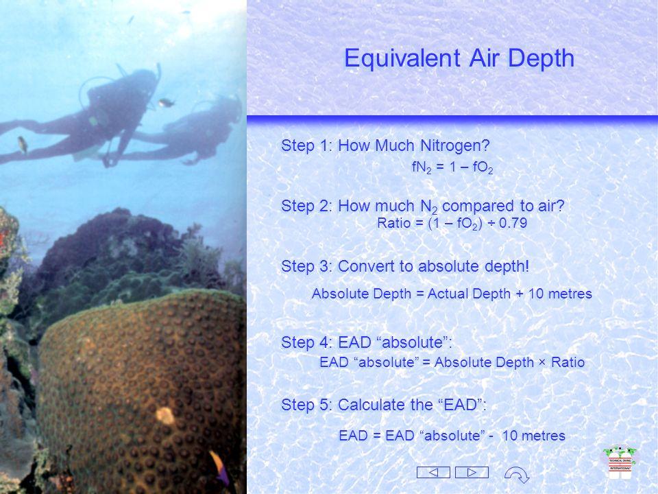 Pg fg Pt Pg fg Pt Daltons Law Pg Pg fg Pt = = × × = = What Dose? Best Mix? How Deep? Daltons Law