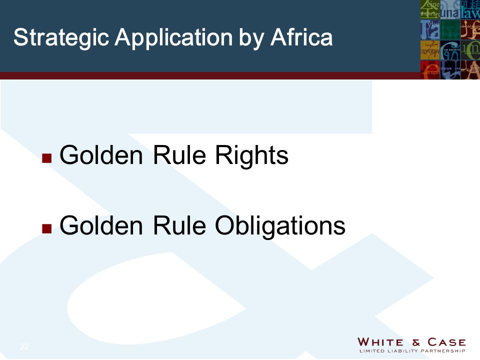 22 Strategic Application by Africa n Golden Rule Rights n Golden Rule Obligations