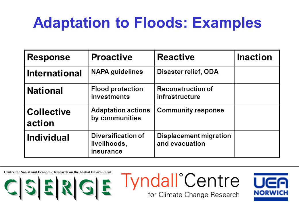 Adaptation to Floods: Examples ResponseProactiveReactiveInaction International NAPA guidelinesDisaster relief, ODA National Flood protection investmen