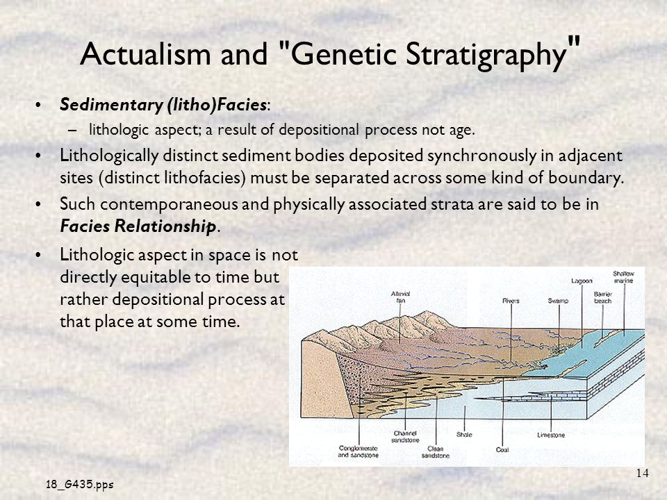 18_G435.pps 14 Actualism and