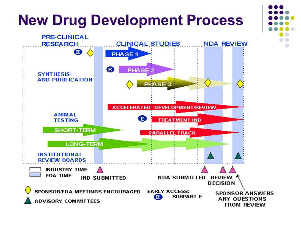 New Drug Development Process