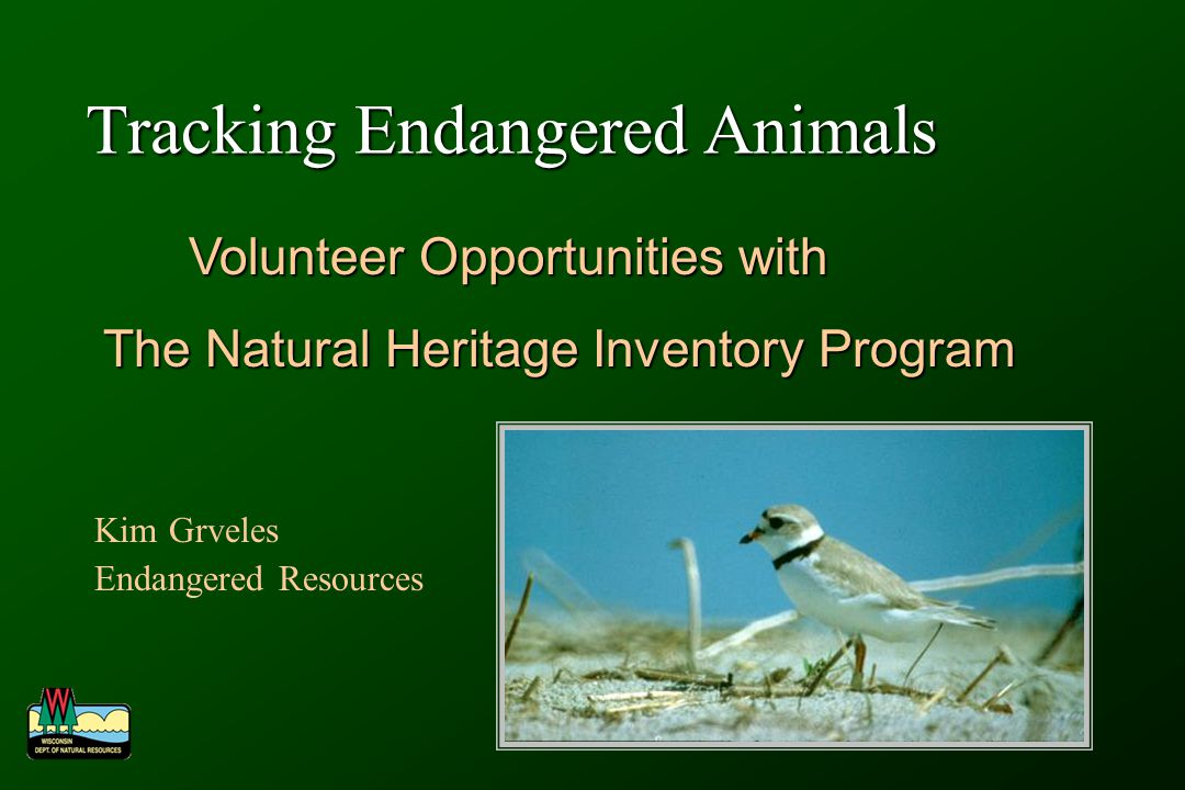 Tracking Endangered Animals Kim Grveles Endangered Resources Volunteer Opportunities with Volunteer Opportunities with The Natural Heritage Inventory Program