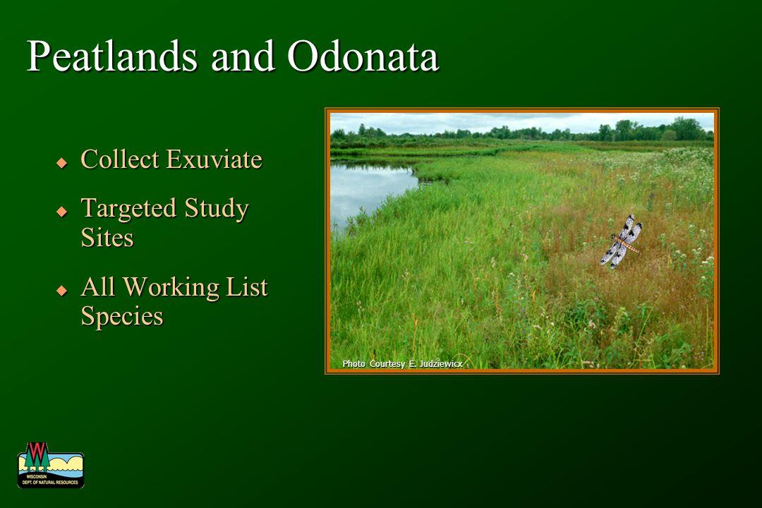 Peatlands and Odonata Collect Exuviate Collect Exuviate Targeted Study Sites Targeted Study Sites All Working List Species All Working List Species Photo Courtesy E.