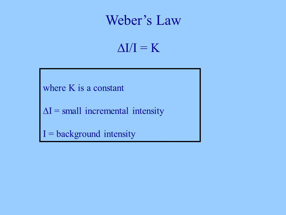 Webers Law I/I = K where K is a constant I = small incremental intensity I = background intensity