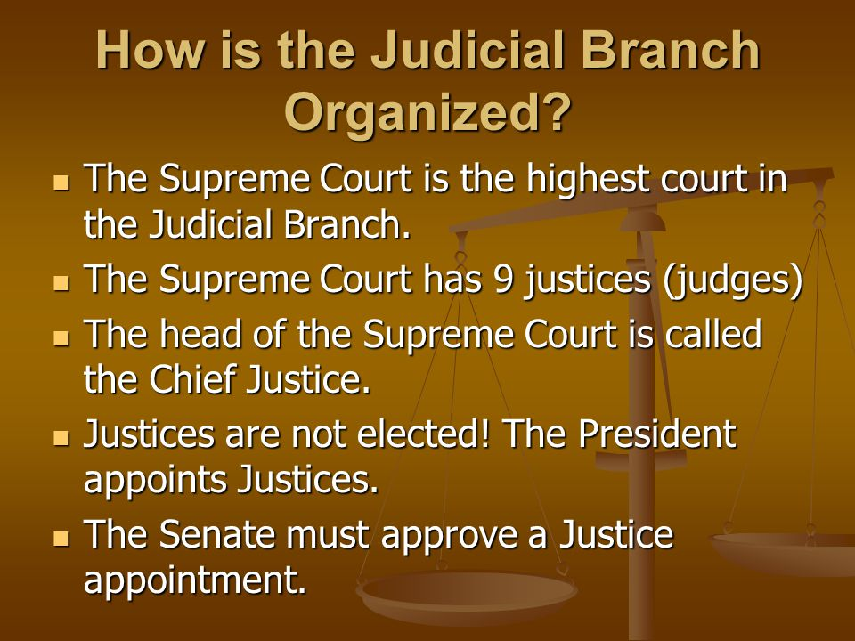 How is the Judicial Branch Organized? The Supreme Court is the highest court in the Judicial Branch. The Supreme Court is the highest court in the Jud