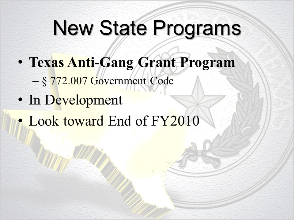 New State Programs Texas Anti-Gang Grant Program – § 772.007 Government Code In Development Look toward End of FY2010