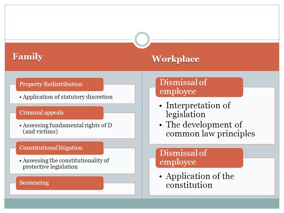 Family Workplace Application of statutory discretion Property Redistribution Assessing fundamental rights of D (and victims) Criminal appeals Assessing the constitutionality of protective legislation Constitutional litigationSentencing Interpretation of legislation The development of common law principles Dismissal of employee Application of the constitution Dismissal of employee