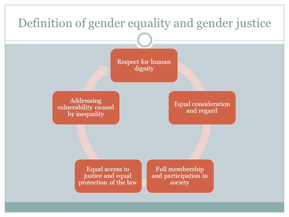 Definition of gender equality and gender justice Respect for human dignity Equal consideration and regard Full membership and participation in society Equal access to justice and equal protection of the law Addressing vulnerability caused by inequality