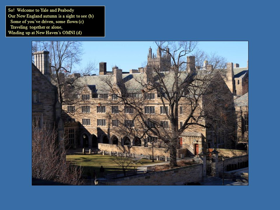 Yale University Art GalleryYale Center for British Art Your admissions free at museums you enter Here, the Art Gallery, and British Art Center (b) Between 10 and 5 gets you in Please check the signup sheets to win (c) A spot on chaperoned tours with a mentor