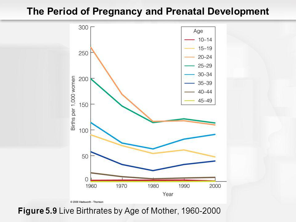 The Period of Pregnancy and Prenatal Development Figure 5.9 Live Birthrates by Age of Mother, 1960-2000