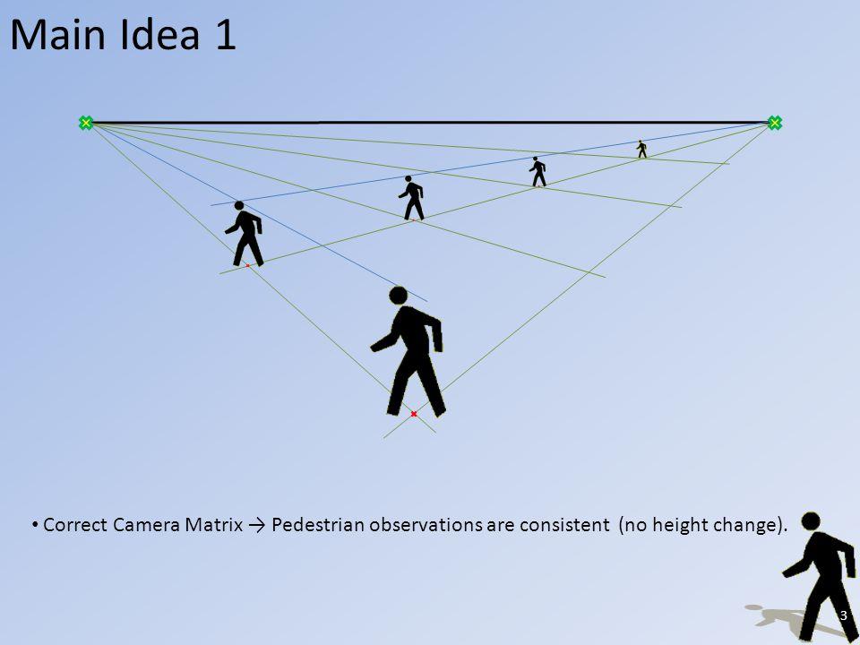 Main Idea 1 Incorrect Camera Matrix Pedestrian grows or shrinks.