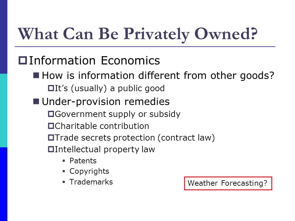 What Can Be Privately Owned? Information Economics How is information different from other goods? Its (usually) a public good Under-provision remedies
