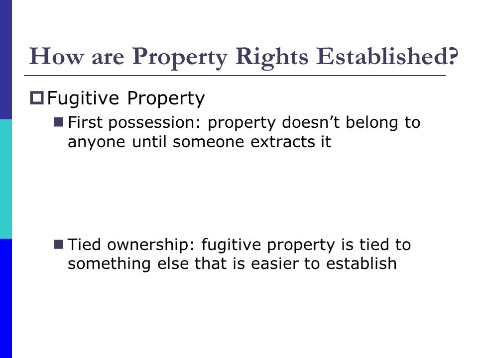 How are Property Rights Established? Fugitive Property First possession: property doesnt belong to anyone until someone extracts it Tied ownership: fu