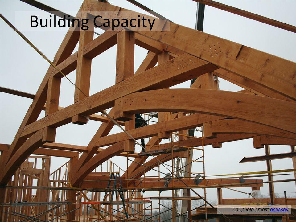 Building Capacity CC photo credit: gsussekgsussek