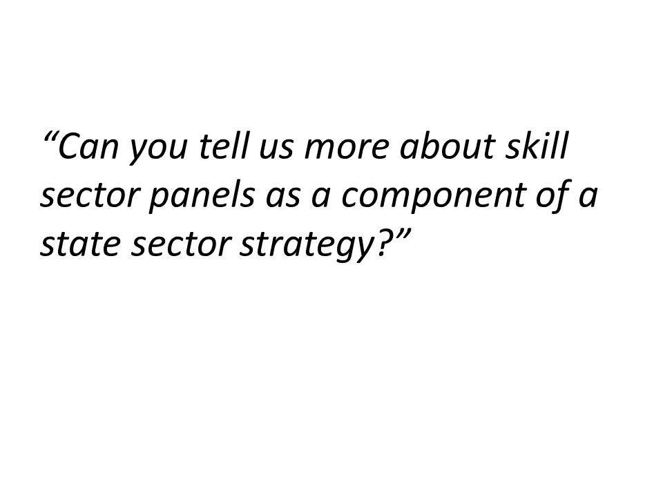 Can you tell us more about skill sector panels as a component of a state sector strategy?