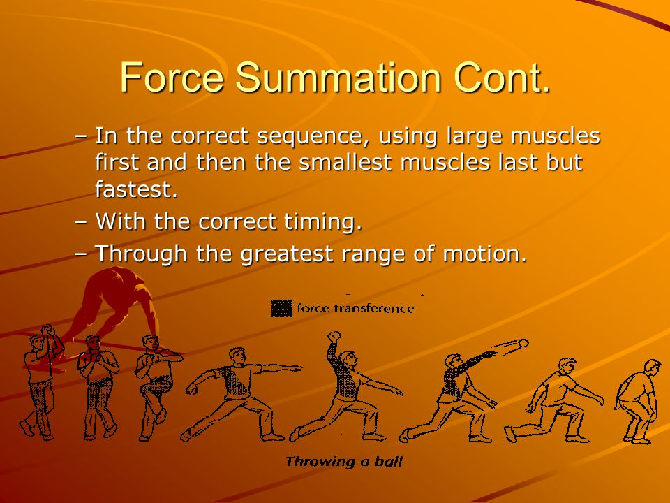 Force Summation Cont. –In the correct sequence, using large muscles first and then the smallest muscles last but fastest. –With the correct timing. –T