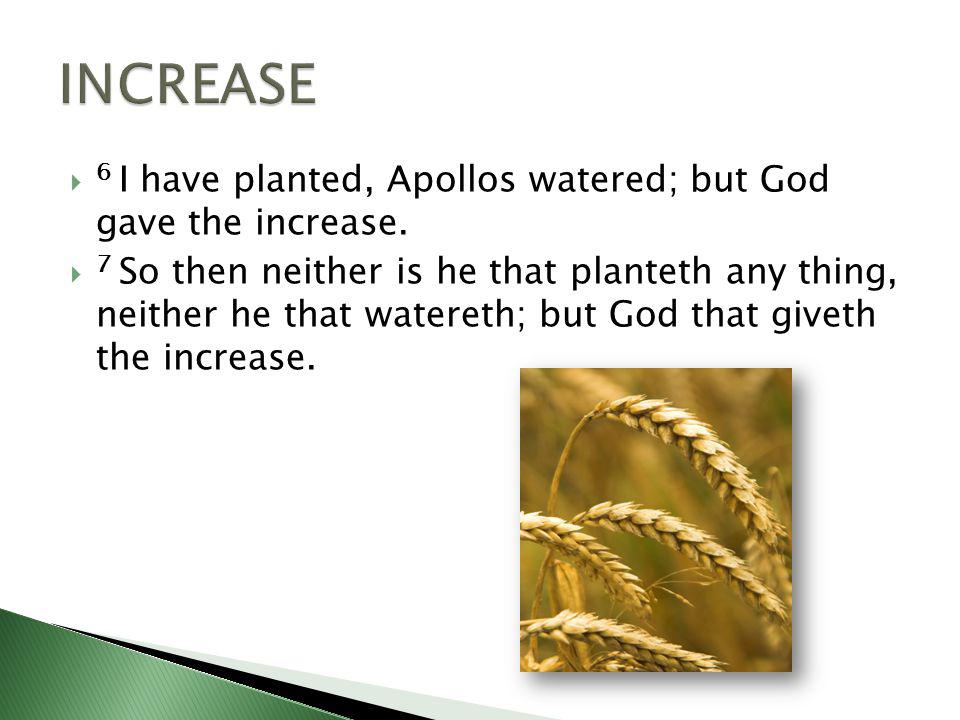 6 I have planted, Apollos watered; but God gave the increase.