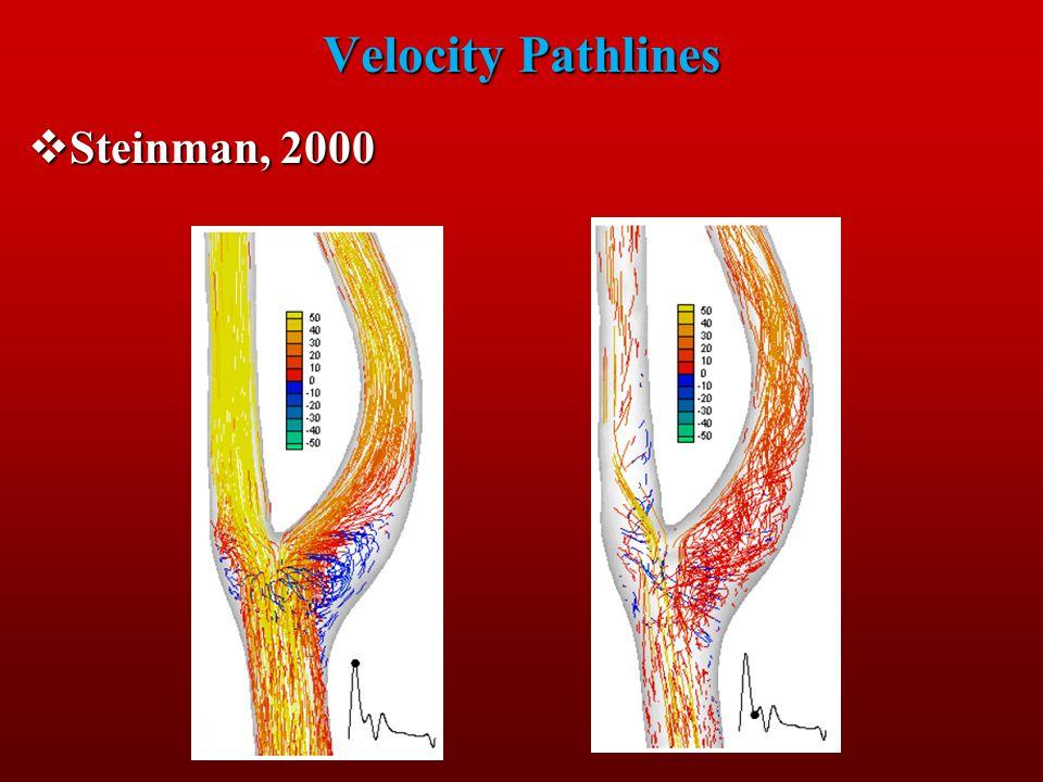 Velocity Pathlines Steinman, 2000 Steinman, 2000